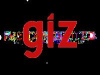 giz-official